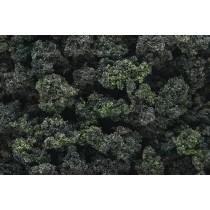 FC1649 FOREST BLEND BUSHES