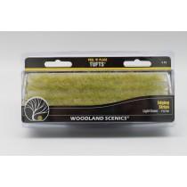 Edging strips light green