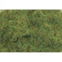 PSG202 2MM SUMMER GRASS 30G