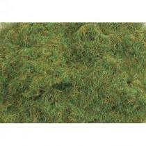 PSG222 2MM SUMMER GRASS 100G
