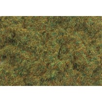 PSG223 2MM AUTUMN GRASS 100G