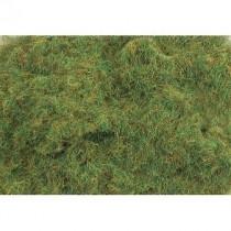 PSG422 4MM SUMMER GRASS 100G
