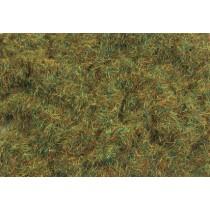 PSG423 4MM AUTUMN GRASS