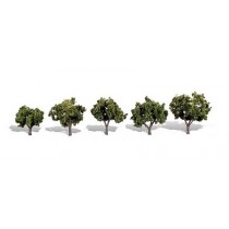 TR3502 SUN KISSED 4 PACK TREES