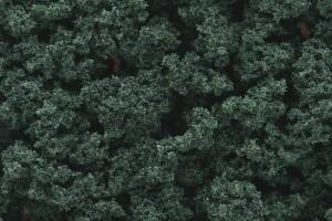 FC1647 DARK GREEN BUSHES